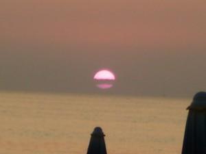 Periodo rosa - foto di Silvia Castellani
