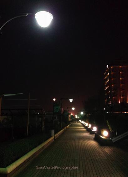 Indovina la luna
