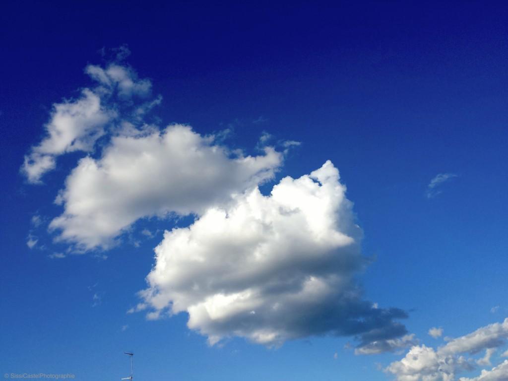 nuvole cosa ci vedete'