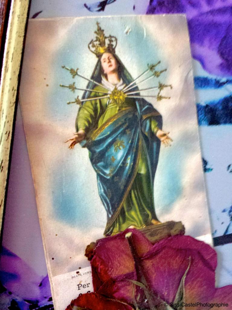 santino abbinato a rosa n.6